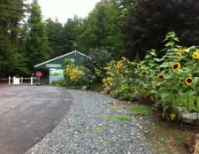 entry-driveway