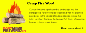 don't move the firewood